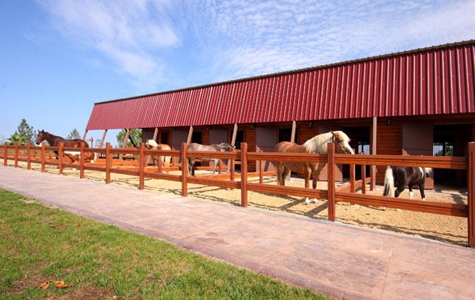 Paddockboxen im Pferdestall